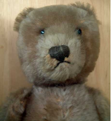 Steiff Teddy Bear Excellent Collector's Condition 1963