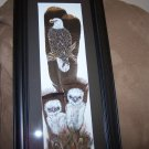 Framed Hand Painted Feathers any animal or bird (sample photos) See www.onwingsofbirds.com