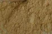 Mineral Makeup Multi-tasking Bisque Concealer 10 Gram  Jar