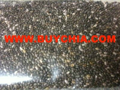 CHIA SEEDS BEST PRICE CHEMICAL FREE