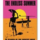 CANVAS: Endless summer