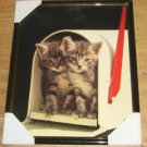 Sweet Kitten Picture - 2 Kittys In Mailbox- Adorable