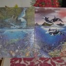 2 Pretty Dolphin Pictures - 18 x 24