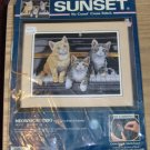 MEOWSICAL TRIO - CUTE KITTIES FROM SUNSET - NIP - PIANO