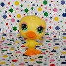 Littlest Pet Shop #051 Duck