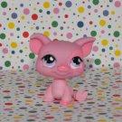 Littlest Pet Shop Pig #926~  Hungriest LPS