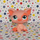 Littlest Pet Shop Pig #622~Funniest