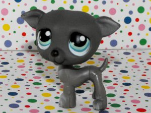 Littlest Pet Shop #319 Baby Great Dane Puppy~Pet Pairs