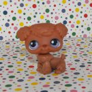 Littlest Pet Shop #39 Poodle~Playful Pets