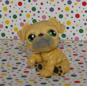 Littlest Pet Shop #107 Tan Bulldog~Birthday Celebration