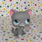 Littlest Pet Shop #74 Gray Kitty Cat~Snowfall Fun
