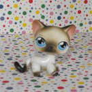 Littlest Pet Shop #5 White Siamese Kitty Cat~Pet Pairs