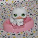 Littlest Pet Shop #15 White Persian Kitty Cat~Pet Pairs