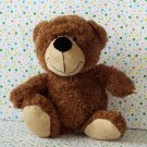 Dan Dee Collector's Choice Brown Teddy Bear Lovey Macy's Earth Rite