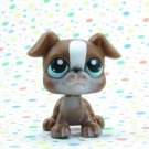 Littlest Pet Shop #83 Brown Boxer Dog ~ LPS Pet Pairs