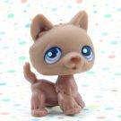 Littlest Pet Shop #38 Brown husky Dog ~ LPS  Winter Puppy