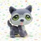 Littlest Pet Shop #487 Purple husky Dog ~ LPS  Winter Puppy