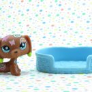 Littlest Pet Shop #1010 Dachshund Deco Tattoo Dog ~ LPS Postcard Pets