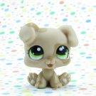 Littlest Pet Shop #1353 Tan Boxer Puppy  Dog ~ LPS Doggie Spa