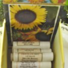 Orange Chocolate Calendula Lip Balm 2 Tubes, Smells Wonderful!