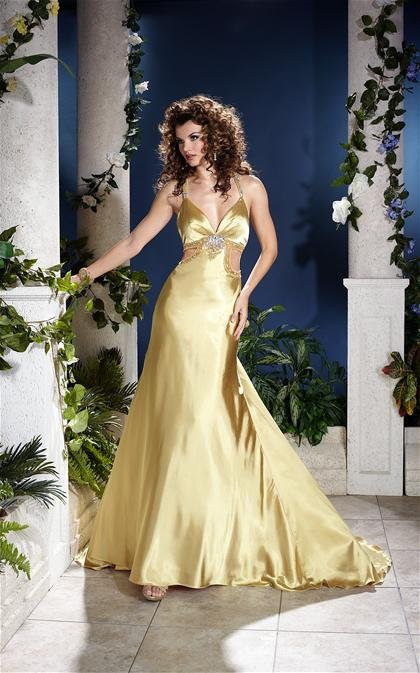 Gorgeous   V  Neck  Beaded  A-line  evening  dress