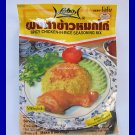INDIAN SPICY CHICKEN-IN-RICE SEASONING MIX - USA SELLER