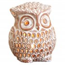 Enlightened Owl Luminary Candle Holder Lantern Indoor Outdoor Accent Lighting