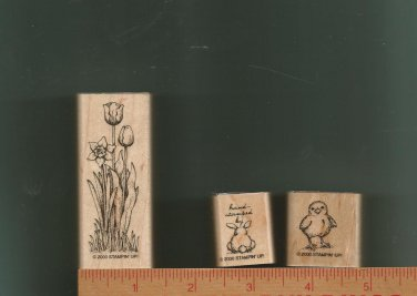 Set of Three Rubber Stamps/Wood Mounts, Stampin Up