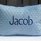 Personalized Toddler Pillow
