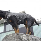 Dog Winter Jacket w/ Fleece Lining Black (M/L) 19-3/8""
