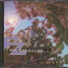 FOLD ZANDURA--RE:TURN Compact Disc (CD)
