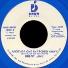 "BRENT LAMB--""""ANOTHER ONE SNATCHED AWAY"""" (3:27) (BOTH SIDES STEREO) 45 RPM 7"""" Vinyl"