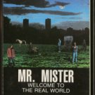 MR. MISTER--WELCOME TO THE REAL WORLD Cassette Tape