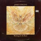 JAMES VINCENT--WAITING FOR THE RAIN 1978 Vinyl LP (Original Issue)