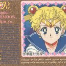 Sailor Moon Carddass Card #119