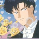 Sailor Moon Archival Trading Card #23