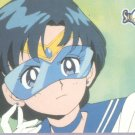 Sailor Moon Archival Trading Card #33