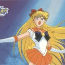 Sailor Moon Archival Trading Card #34