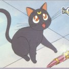 Sailor Moon Archival Trading Card #48