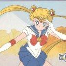 Sailor Moon Archival Trading Card #56