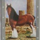 Bella Sara Series One Card #11 Hercules