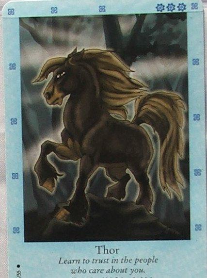 Bella Sara Northern Lights Card #24 Thor