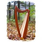 Shepherd Celtic Lap Harp