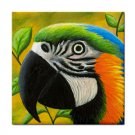 Ceramic Tile Coaster from art painting Bird 50 Parrot
