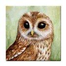 Ceramic Tile Coaster from art painting Bird 57 owl