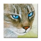 Ceramic Tile Coaster from art painting Cat 293