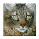 Ceramic Tile Coaster from art painting Cat 359