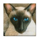 Ceramic Tile Coaster from art painting Cat 377 Siamese