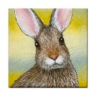 Ceramic Tile Coaster from art painting Hare 29 Rabbit