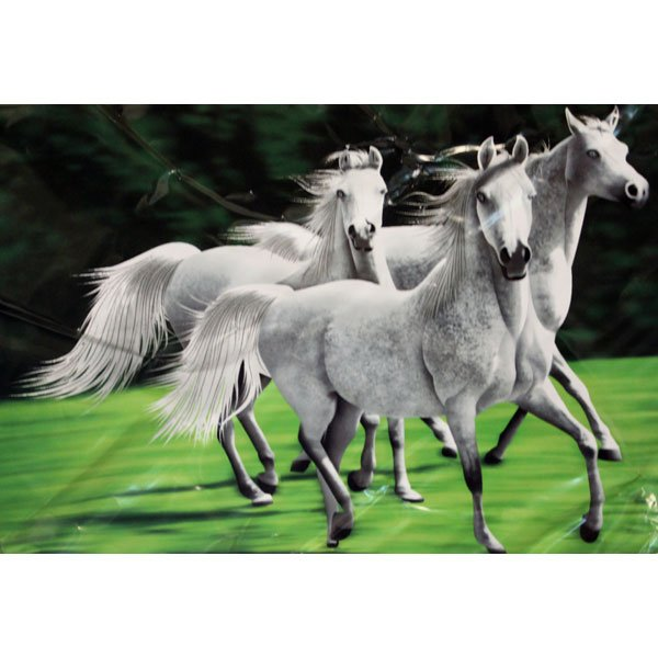 Wild White Horses Animal White Black Green Color Queen Mink Style Blanket